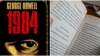 Photo of Book Review on 1984