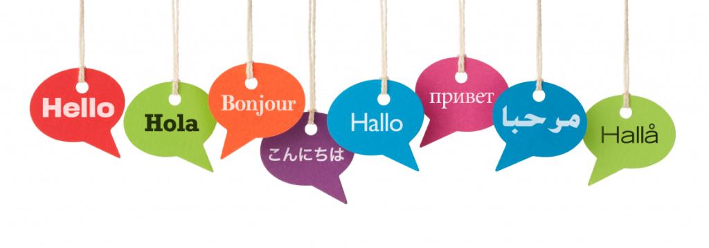 culture and language attitudes
